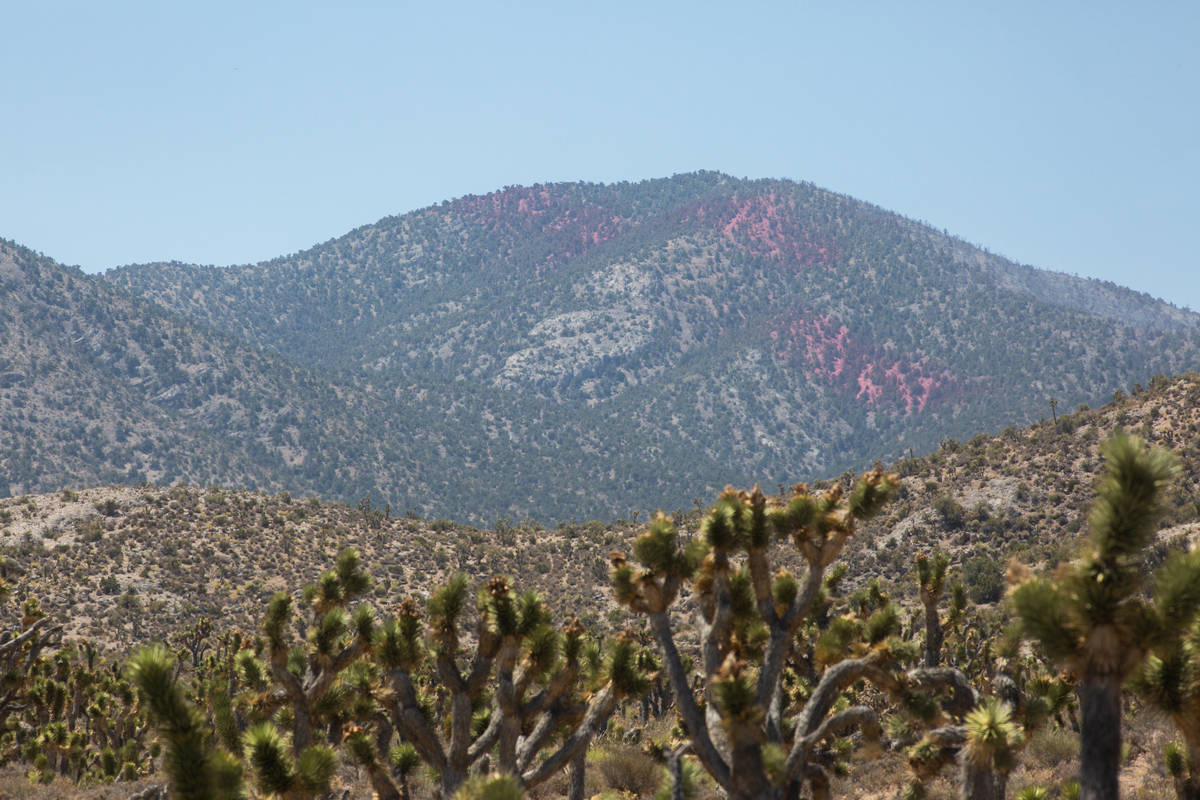 Fire retardant can be seen on hills from Lee Canyon Road to prevent the spread of the Mahogany ...