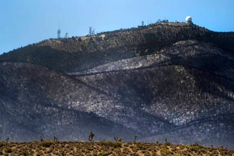 The forest ridge is burned below the Angel Peak FAA Radar Site during the Mahogany Fire on Moun ...