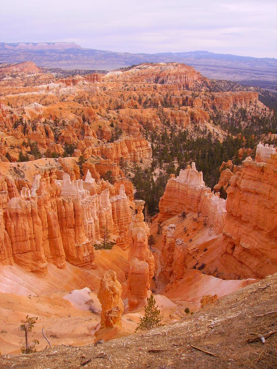 While it's called Bryce Canyon, the park is made up of about one dozen natural limestone amph ...