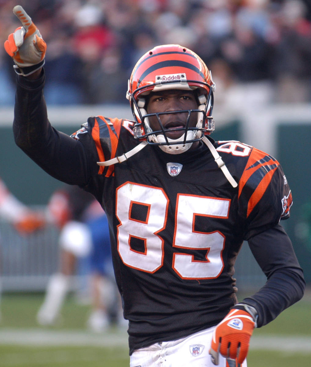 Cincinnati Bengals receiver Chad Johnson reacts in the closing minutes of their 34-27 win over ...