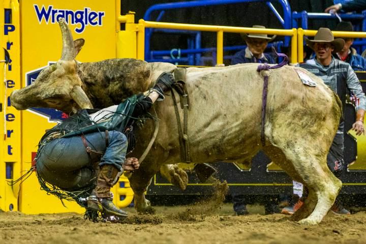 Trey Benton II of Rock Island, Texas, is knocked off and takes a horn in Bull Riding at the ten ...