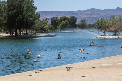 A high of 107 is forecast for Las Vegas on Thursday, July 16, 2020, according to the National W ...