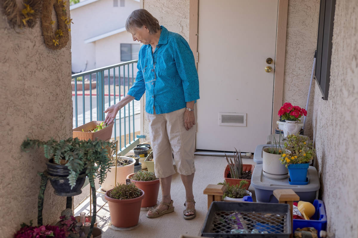 Sunset Garden Club president Nancy Bovill shows her plants on her patio in Henderson on Tuesday ...
