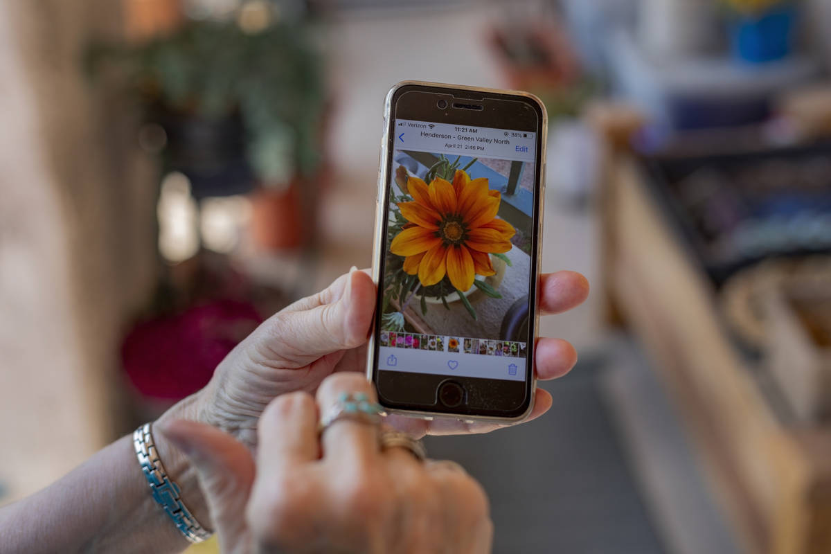 Sunset Garden Club president Nancy Bovill shows a photograph of her flowers that bloom in sprin ...