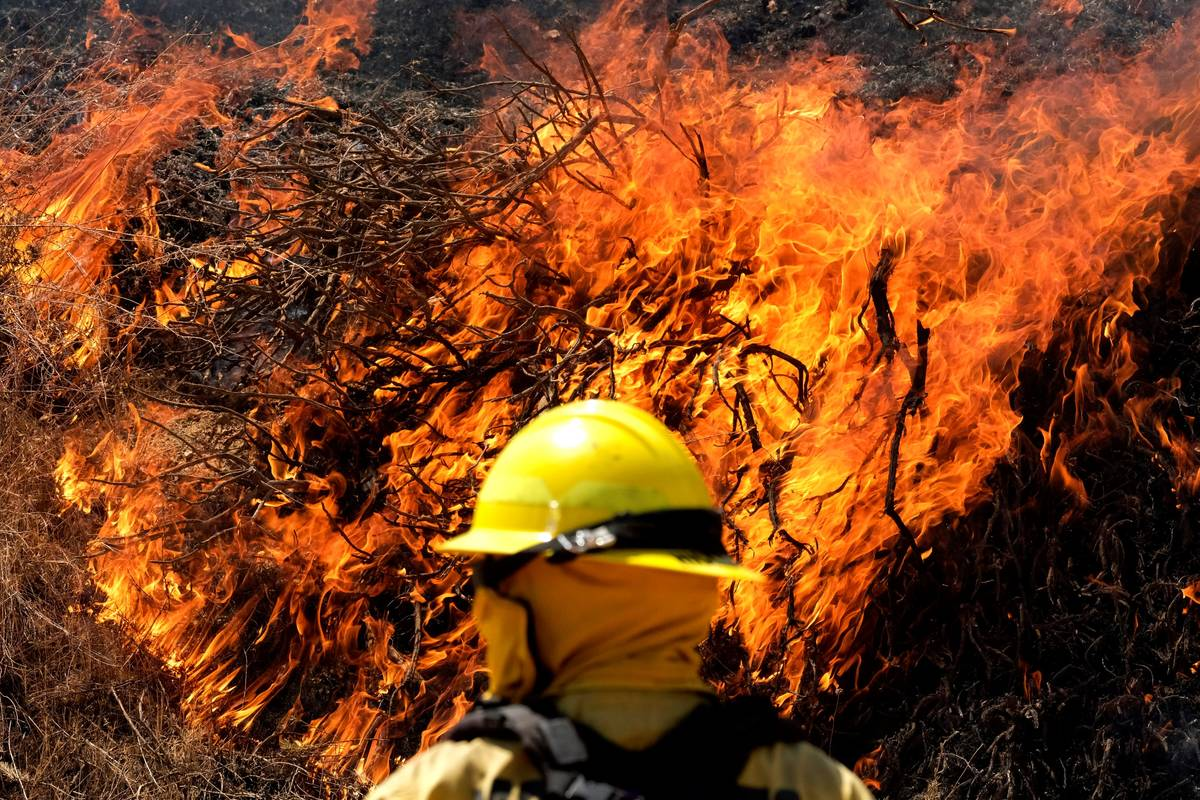 A firefighter watches the Apple Fire in Banning, Calif., Sunday, Aug. 2, 2020. (AP Photo/Ringo ...