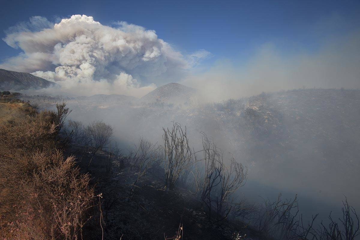 Burned area at the Apple Fire in Cherry Valley, Calif., on Saturday, Aug. 1, 2020. Smoke from t ...