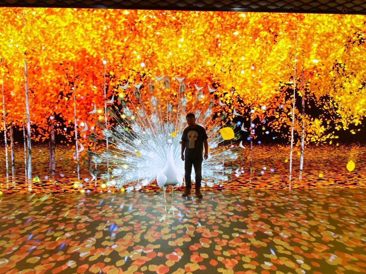 The Museum of Dream Space is a six-room museum that boasts interactive technology mixed in with ...