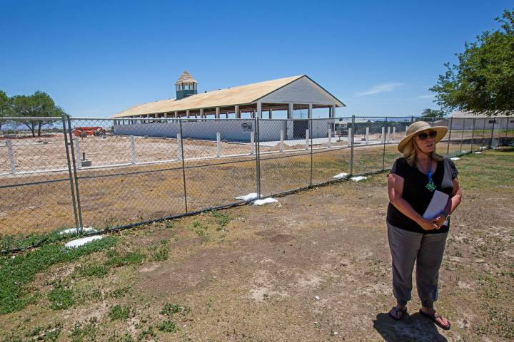 In this June 19, 2020, file photo, Karen Livingston, leader of the Save Floyd Lamb Park action ...