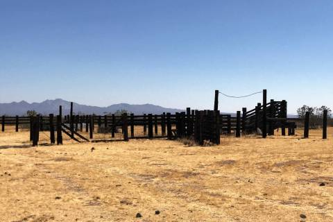 When hunting doves in the desert, something as simple as an old corral will attract mourning do ...