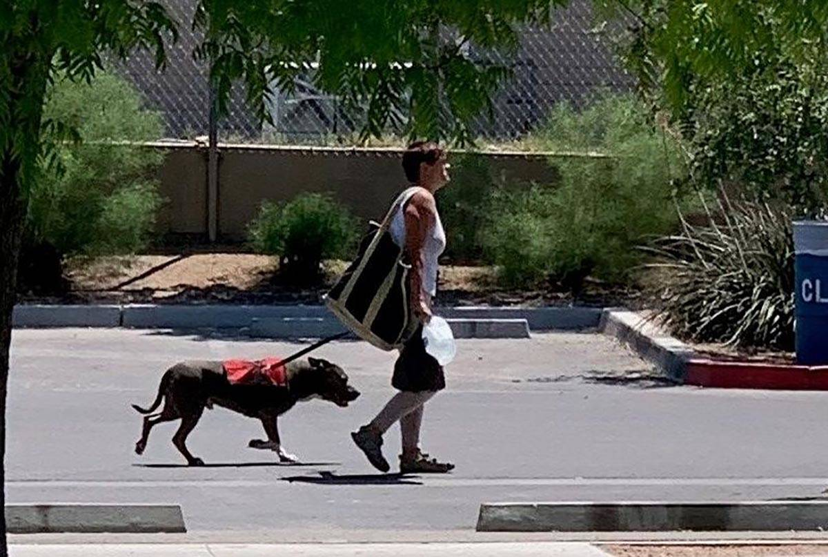 A woman allegedly unleashed and ordered her dog to attack a 60-year-old man at a Las Vegas park ...