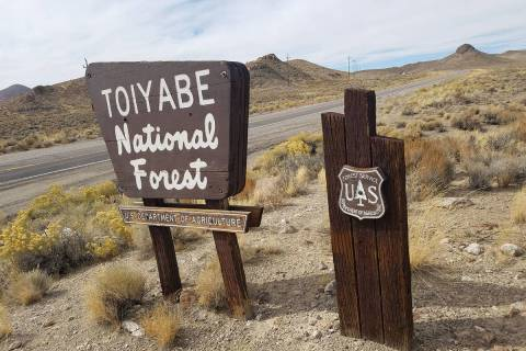 Humboldt-Toiyabe National Forest. (David Jacobs/Pahrump Valley Times)