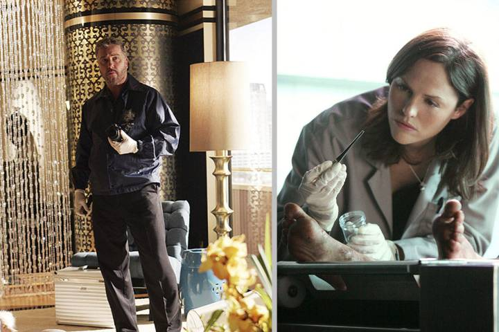 William Petersen, left, and Jorja Fox are said to be in talks to return to their original chara ...