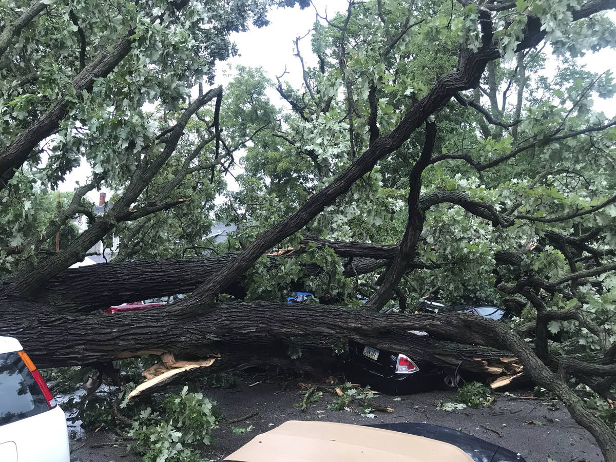 A storm with gusts more than 80 mph knocked down a tree, which crushed about four cars in Des M ...