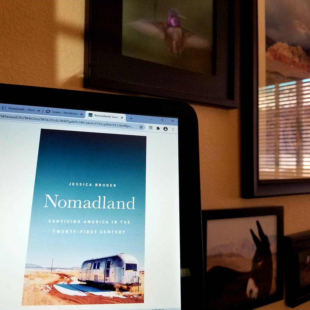 """Electronic copies of books, including """"Nomadland: Surviving America in the Twenty-First Centu ..."""