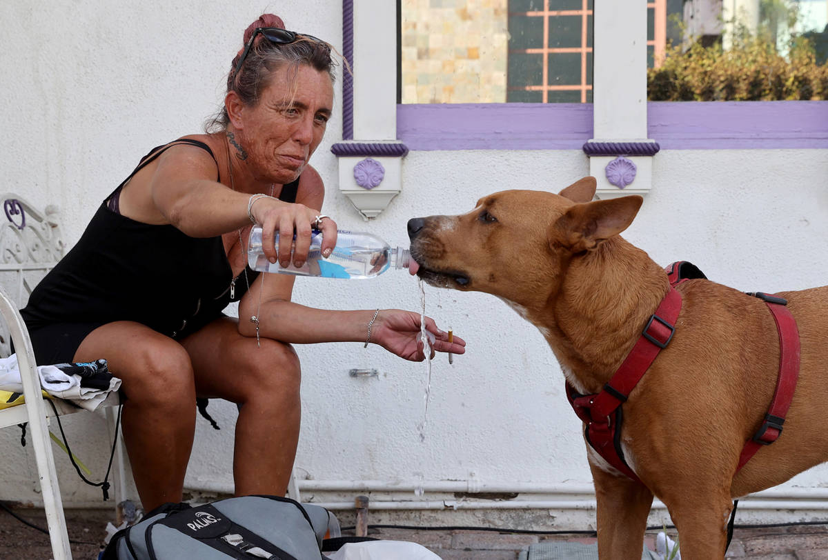 Denise Pultz waters her dog Brutus in the shade on Las Vegas Boulevard at Bridger Avenue Monday ...