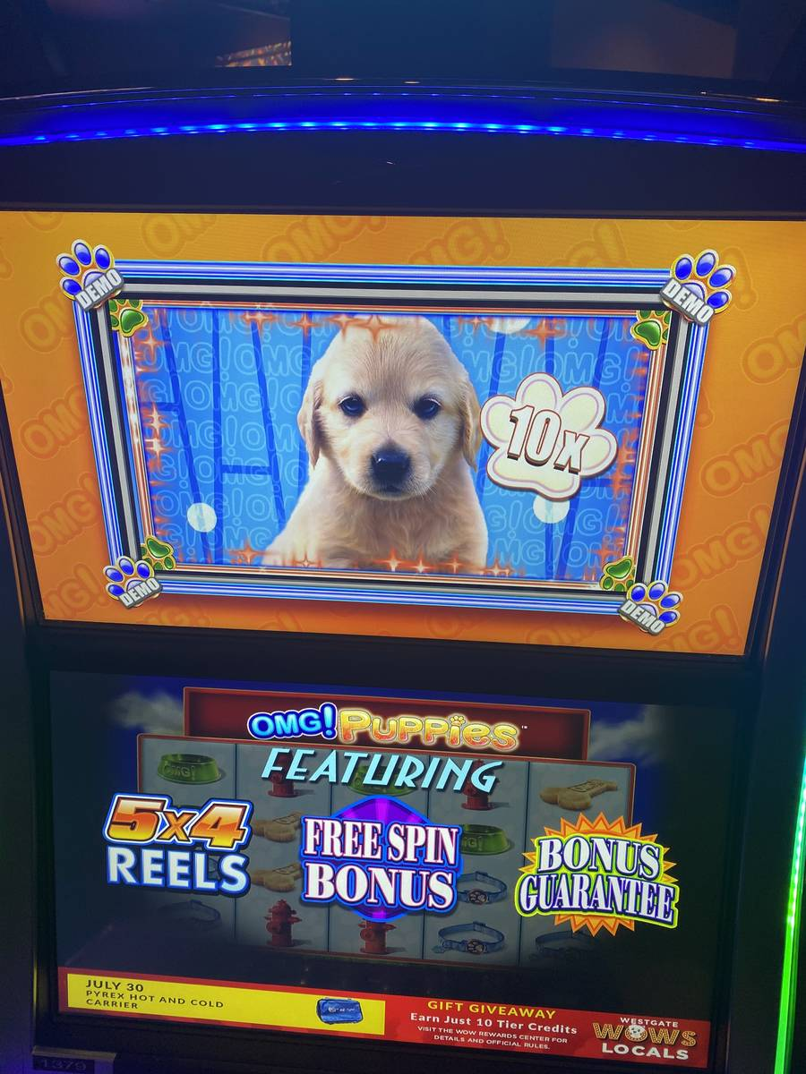 A shot of an OMG! Puppies slot machine at Westgate Las Vegas on Friday, July 30, 2020. (John Ka ...