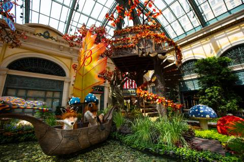 """A pair of foxes are seen in a boat next to a treehouse for the """"Into the Woods"""" fall display at ..."""