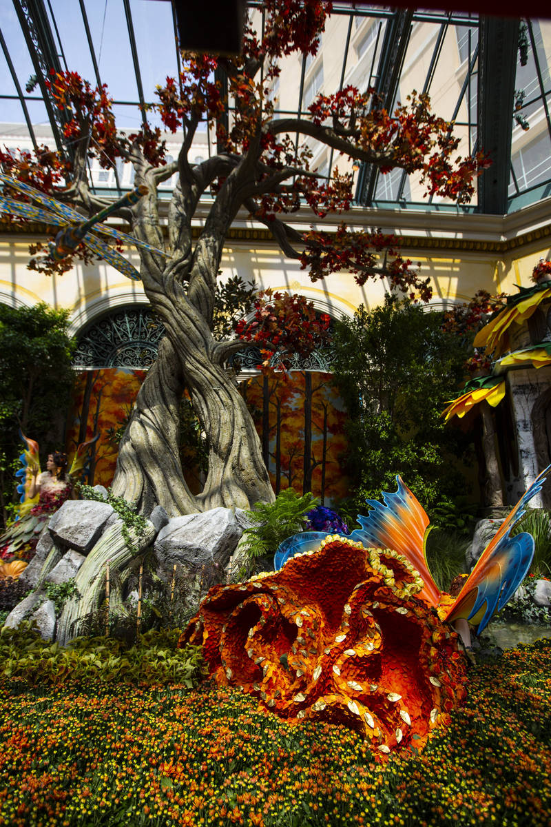 """A mythical forest is the theme for the """"Into the Woods"""" fall display at the Bellagio Conservato ..."""