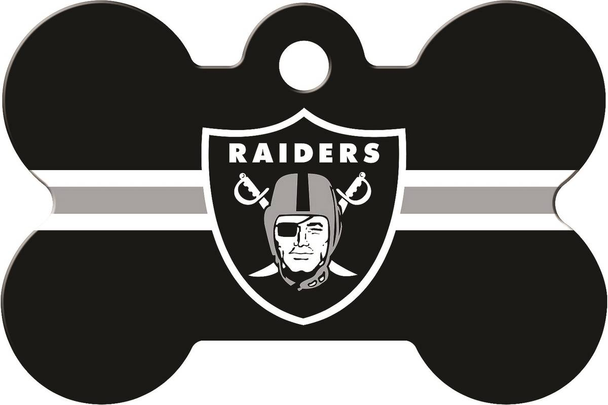 Help your pet identify with the Raiders with this identity tag. (Chewy.com)