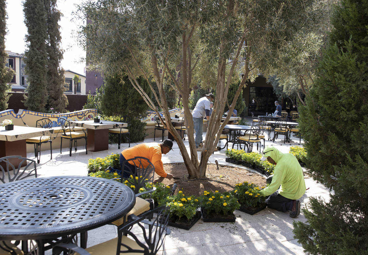 Wine garden and a terrace at the Tuscan Highlands apartment complex under construction near the ...