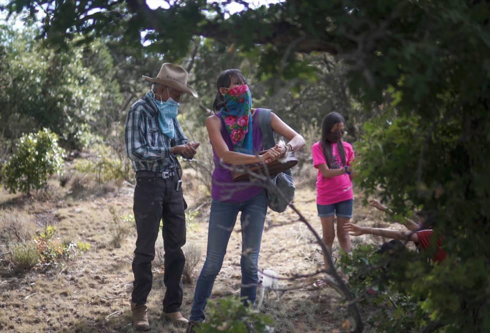 Jeneda Benally, center, searches for pine needles in Flagstaff, AZ, with her father, Jones Bena ...
