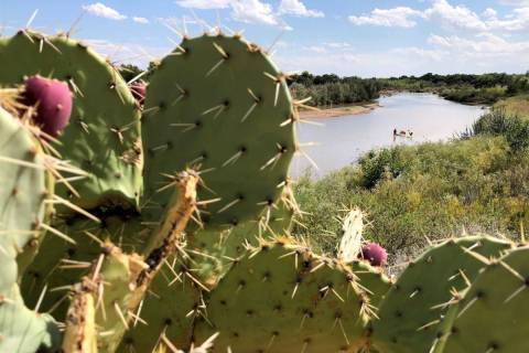 Cactus flanks the banks of the Rio Grande as boaters in the distance navigate the shallow river ...