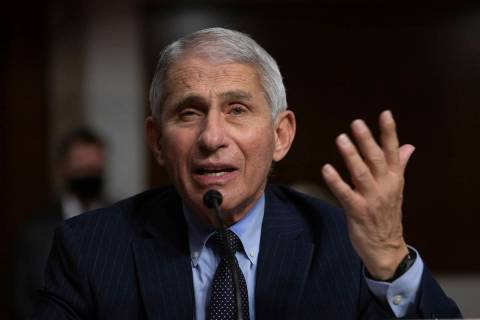 Dr. Anthony Fauci, Director of the National Institute of Allergy and Infectious Diseases at the ...