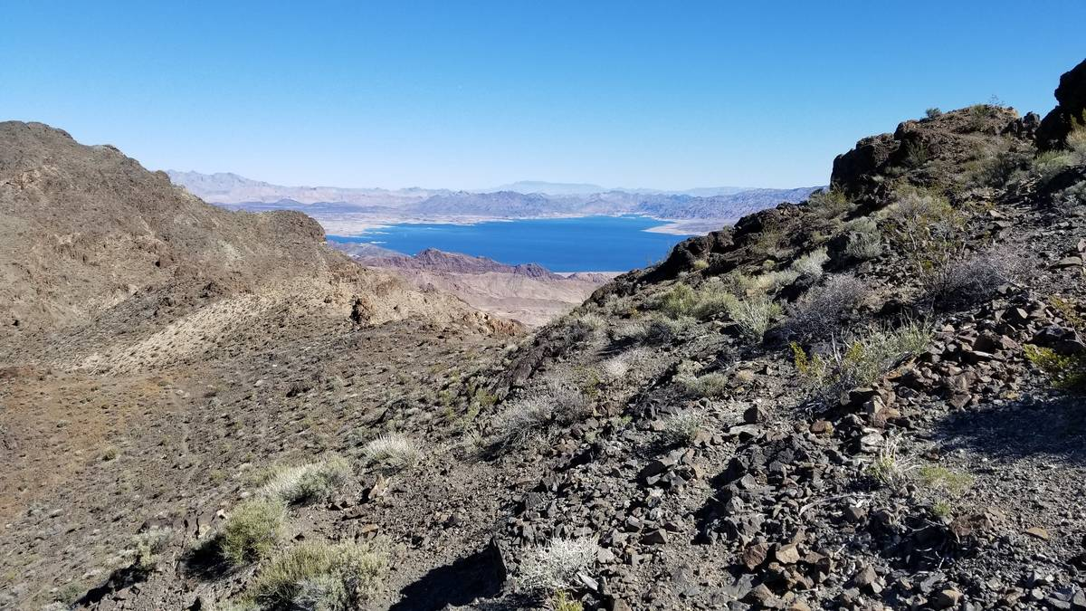 View of Lake Mead from the Black Mountain Overlook of the River Mountain Hiking Trail. (Natalie ...