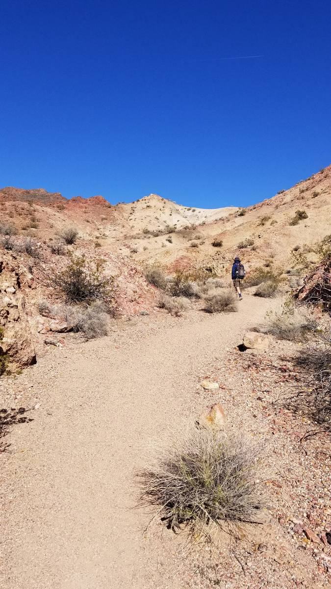 The view from the beginning of the River Mountain Hiking Trail. (Natalie Burt Las Vegas Review- ...