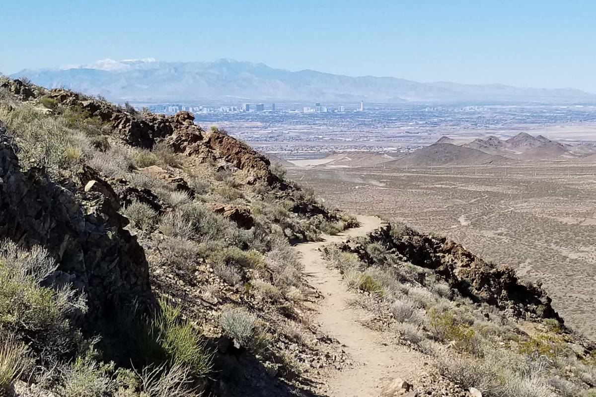 View of the Las Vegas Valley and the Spring Mountains from the top reaches of the River Mountai ...