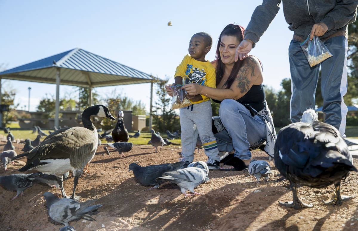 Amber Turner, center, holds Josiah Johnson, 2, as they sprinkle some bread crumbs to the birds ...