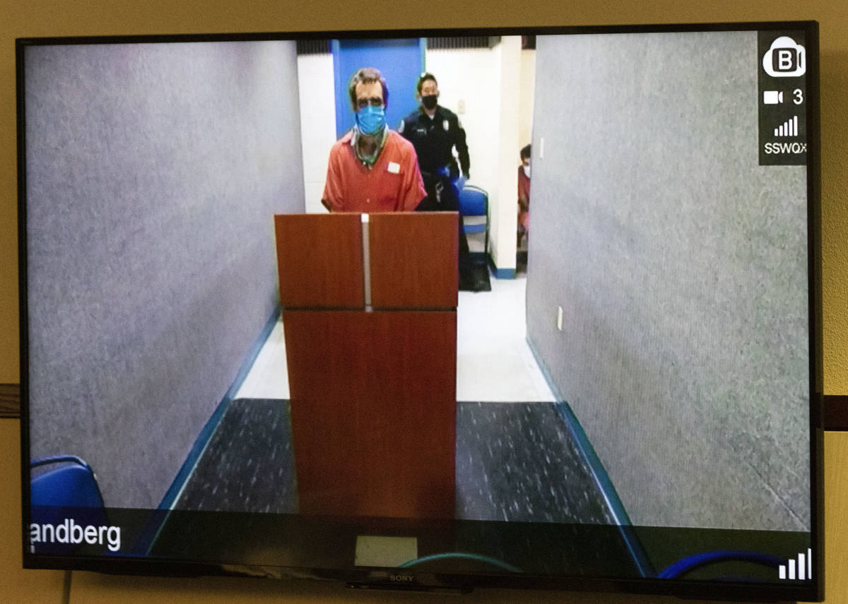 Christopher McDonnell, 28, charged in a Thanksgiving shooting spree, appears via videoconferenc ...