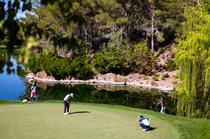 reviewjournal.com - Greg Robertson - Popularity of golf continues to surge despite COVID