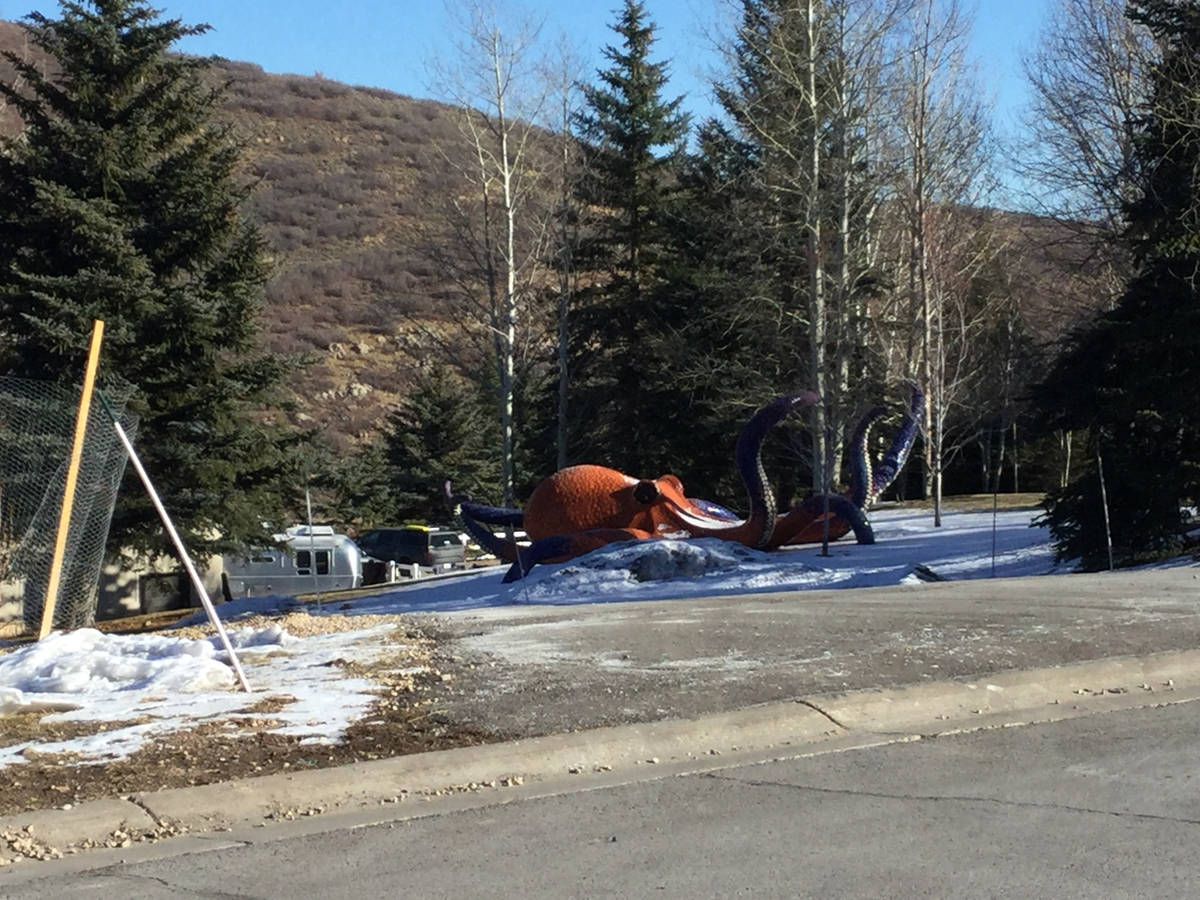 A massive decorated octopus is seen Thursday, Dec. 3, 2020, on the front lawn of 2636 Aspen Spr ...