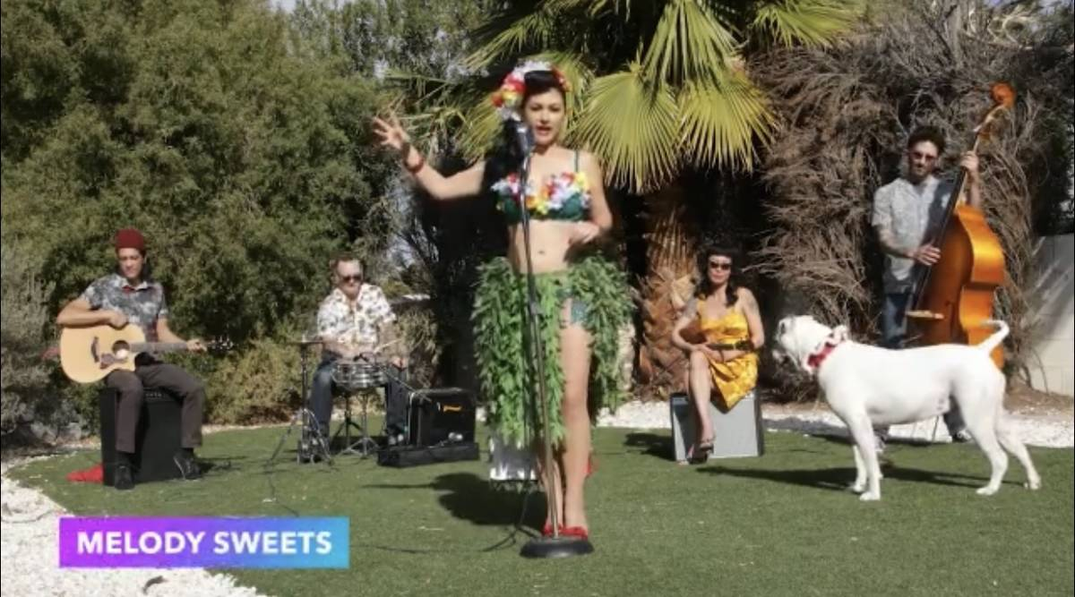 Melody Sweets, The Hypnotiques and Pearl the Dog are shown on a screen grab during Tony Hsieh's ...