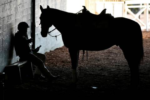An outrider takes a break underneath the grandstands during the opening day of horse racing at ...