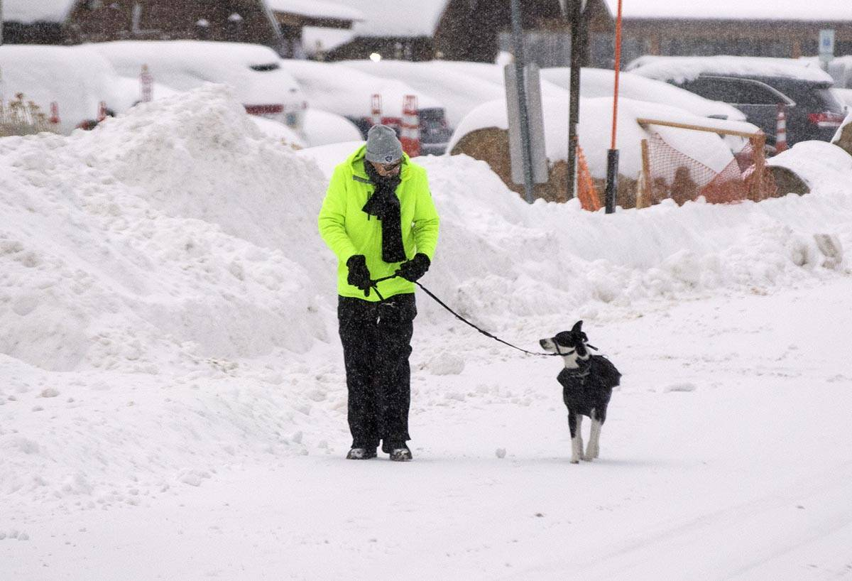Joe Bahr walks on snow covered street with his dog Charlie, on Monday, Jan. 25, 2021, in Mount ...