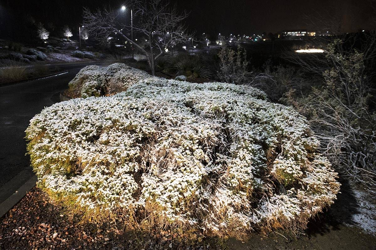 The chilly cold and snow of winter came early Tuesday, Jan. 26, 2021, in Henderson. (Bizuayehu ...