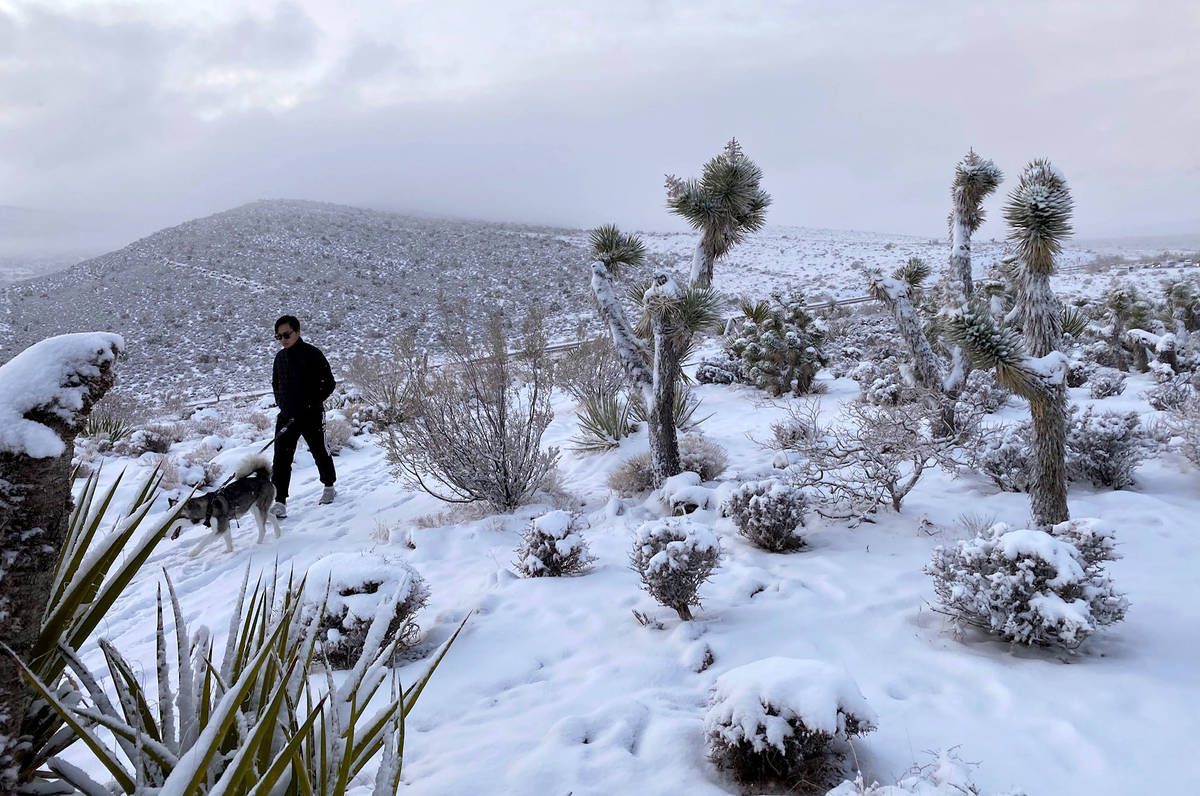 Hung Luu walks his dog Sky down from the overlook as the clouds break on a snowy day in the Red ...