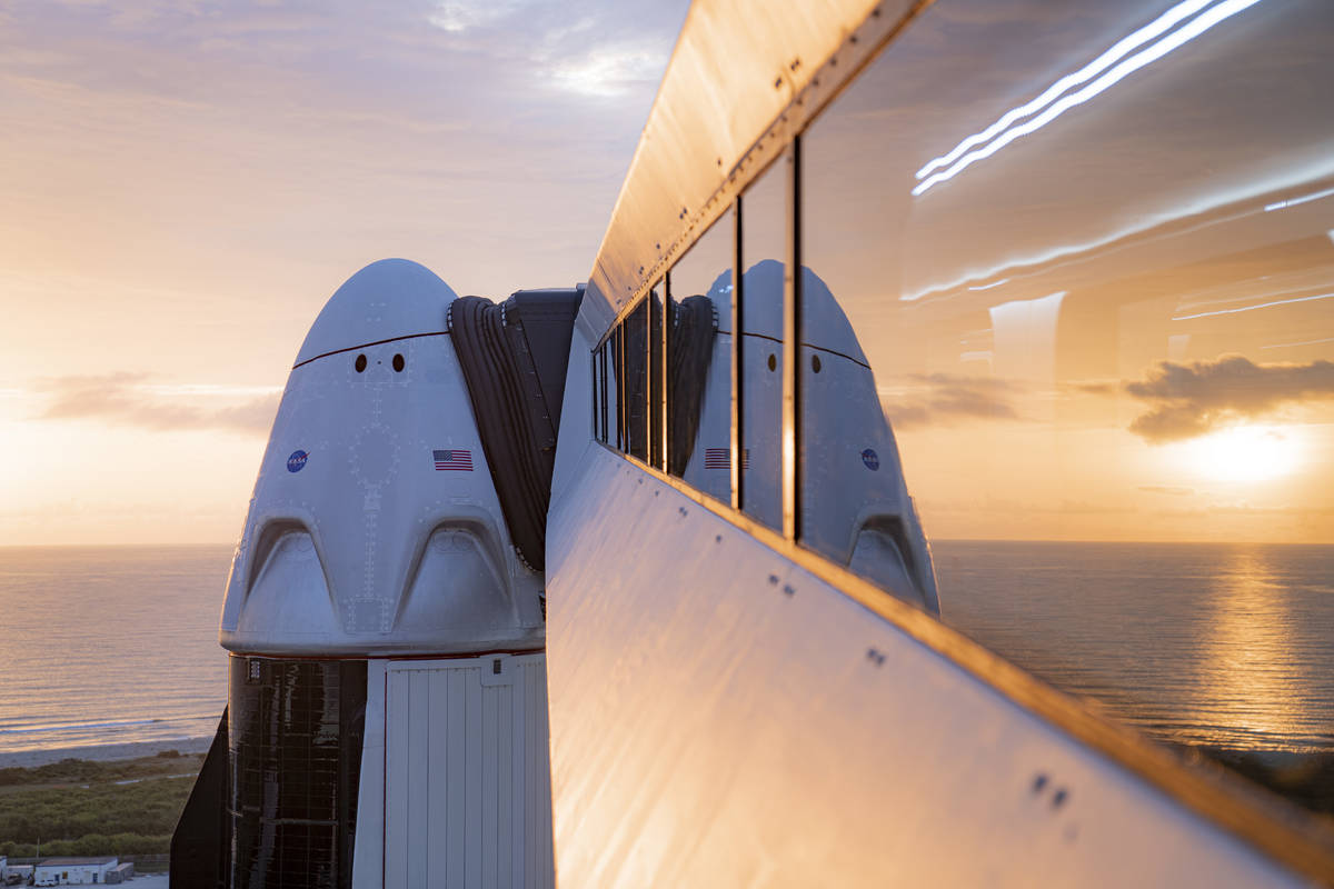 A SpaceX Crew Dragon craft. (SpaceX)