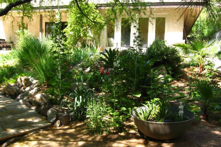 This landscape on a half-acre uses about $250 each month during the summer. Landscape plants pr ...
