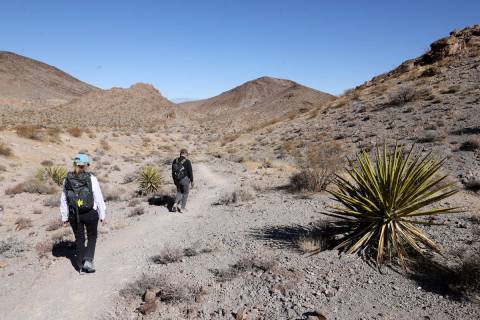 Guido and Wendy Metzger of Henderson hike in Sloan Canyon National Conservation Area Friday, Fe ...