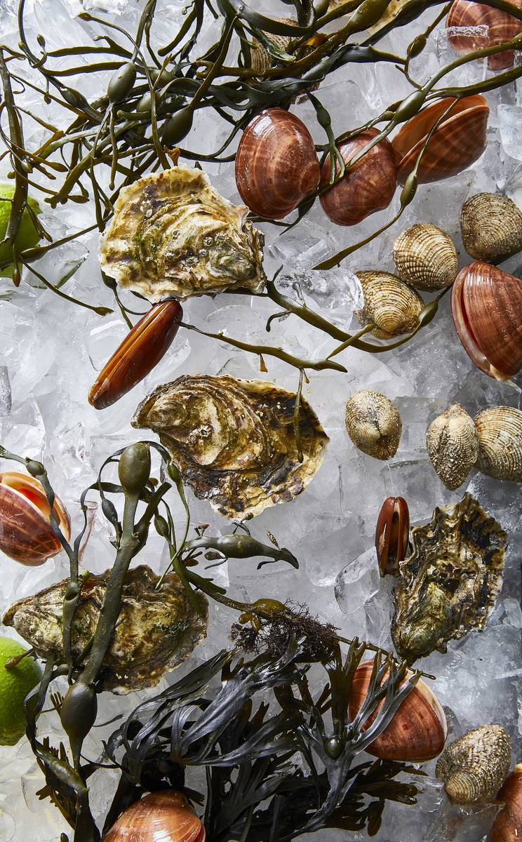 Oysters and clams will be offered at the new Estiatori Milos raw bar. (Tim Atkins)
