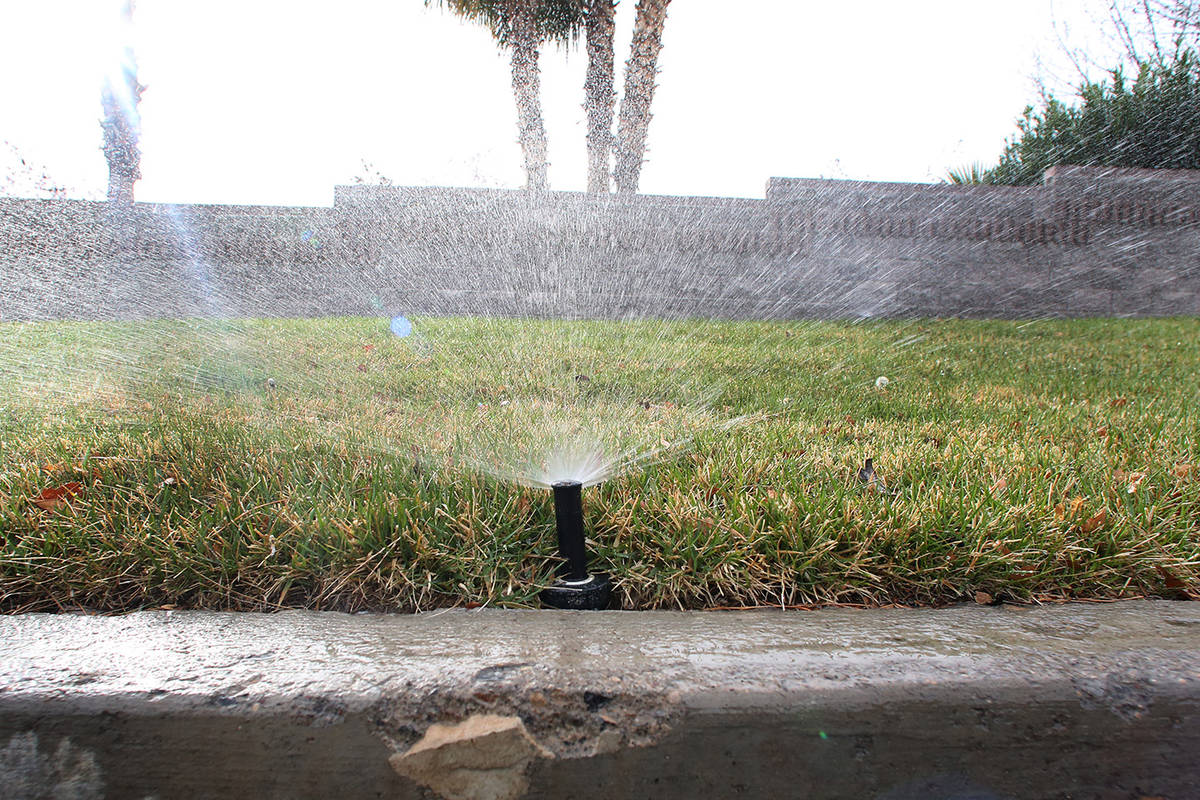 A sprinkler is on to water grass at Green Valley Parkway on Tuesday, March 5, 2019, in Henderso ...