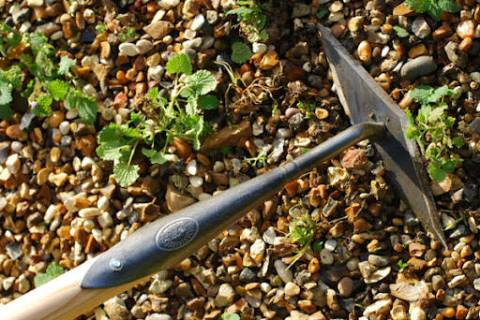 A diamond hoe is used when removing weeds from soils without rocks such as raised beds. (Bob Mo ...