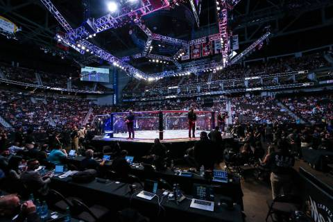 Fans await the next fight during a UFC 261 mixed martial arts event, Saturday, April 24, 2021, ...