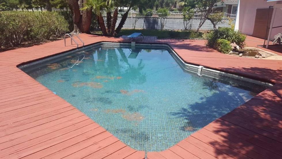 The pool at 2037 Ottawa Drive. (DeeDee Lopez)