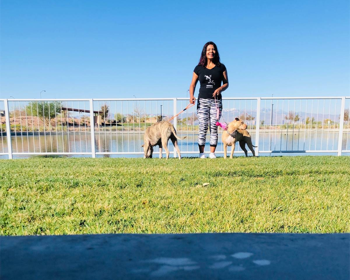 Araceli and Sebastian Gonzalez takes her dogs out for a walk at the Dakota Dog Park in the Dese ...