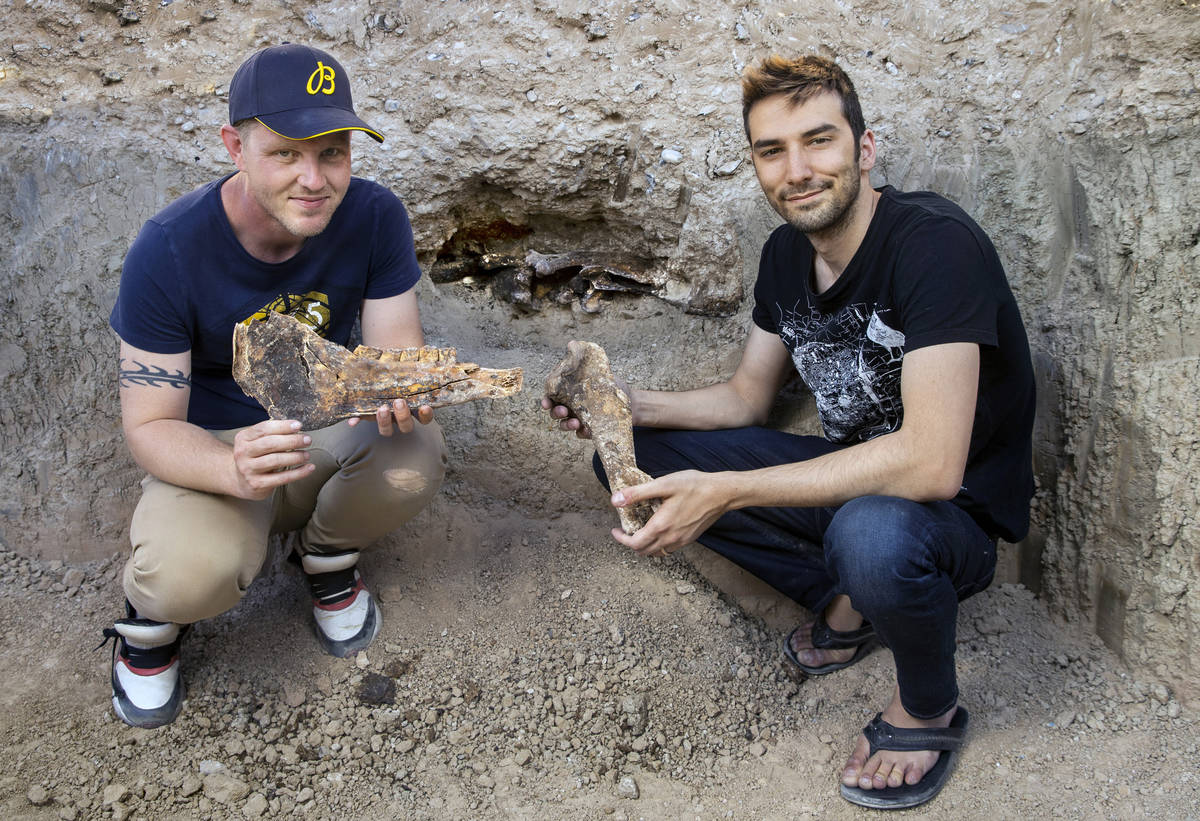 Matt Perkins, left, and Josh Anghel found which may be horse bones in their back yard as a pool ...