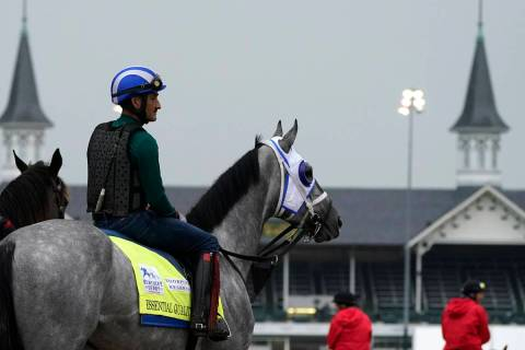 Kentucky Derby entrant Essential Quality waits to work out at Churchill Downs Thursday, April 2 ...